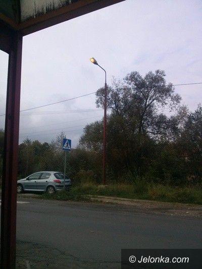 Region: Problem świecących w dzień latarni w Łomnicy