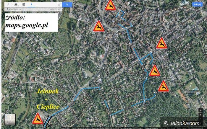 Jelenia Góra: Powstaje szlak jelonków, możesz pomóc w jego tworzeniu!