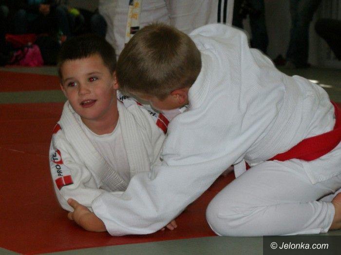 Jelenia Góra: Młodzi przedstawiciele sztuk walki w akcji