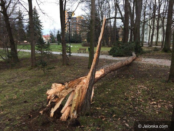 Region: Szaleje wichura–drzewa spadły na budynek i drogi