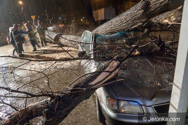 Jelenia Góra: Drzewo zniszczyło samochód w Jeleniej Górze AKTUALIZACJA