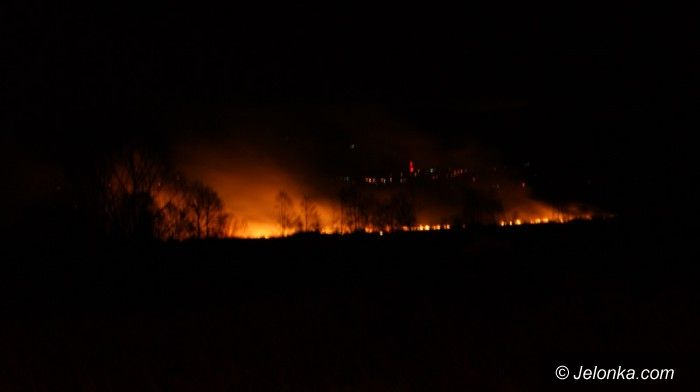 Jelenia Góra: Znowu plaga pożarów traw