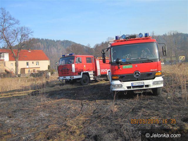 Region: Plaga pożarów traw w regionie