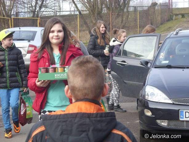 Jelenia Góra: Uczniowie zbierają karmę dla zwierzaków