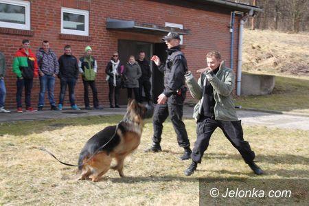Jelenia Góra: Policjanci gościli uczniów z Bolkowa i Jeleniej Góry
