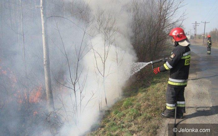 Powiat: Trawy w regionie płoną na potęgę
