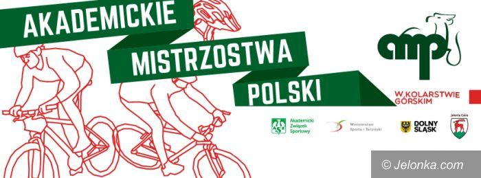 Jelenia Góra: Zostań instruktorem kolarstwa