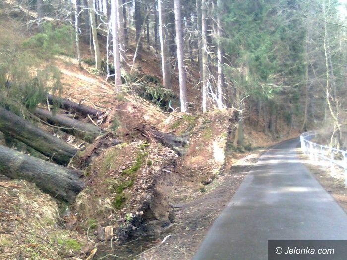 Jelenia Góra: Czytelnik:  Wichura nie oszczędziła trasy do Perły Zachodu