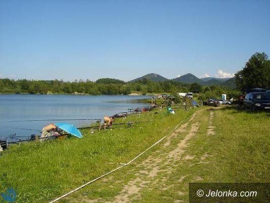 Jelenia Góra: Nie ma ryb w jeleniogórskich wodach?