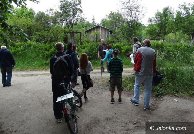 Jelenia Góra: Tropem muz na jeleniogórski Helikon