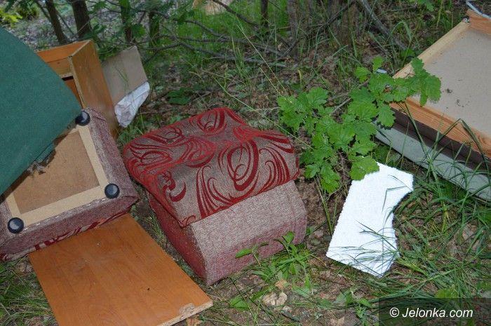 Region: Czy ktoś wie, kto to wyrzucił?
