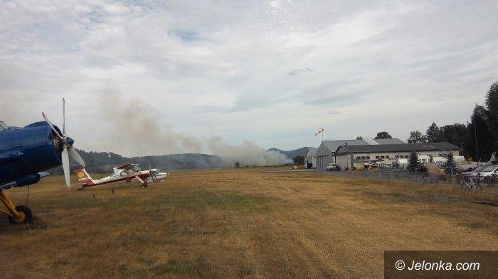 Jelenia Góra: Płonęły nieużytki w okolicy lotniska