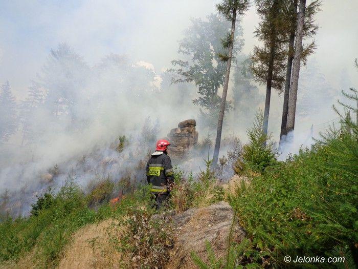 Region: Pożar lasu w Rudawach Janowickich