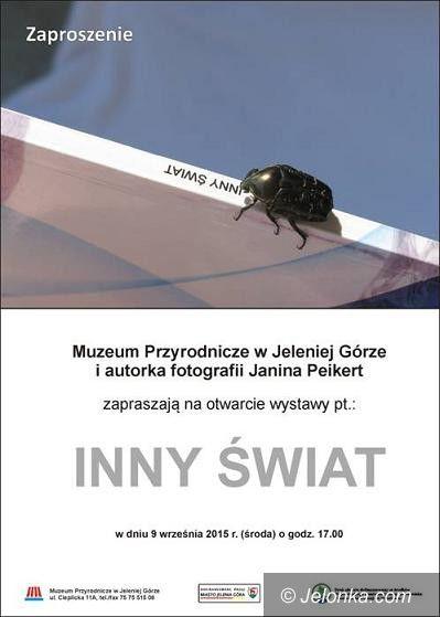 """Jelenia Góra: """"Inny świat"""" Janiny Peikert w Muzeum Przyrodniczym"""