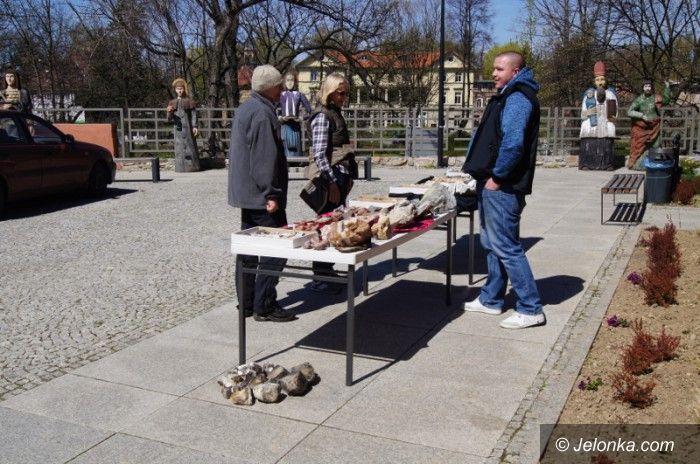 Jelenia Góra: W Muzeum Przyrodniczym obchodzono Dzień Ziemi
