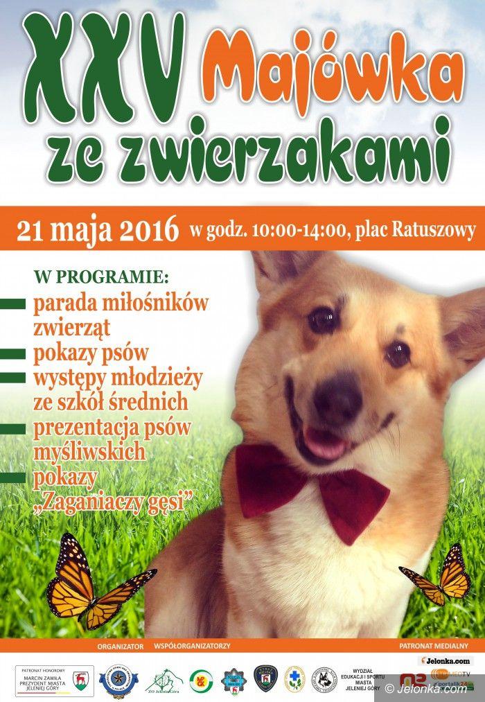 Jelenia Góra: W sobotę Majówka ze zwierzakami
