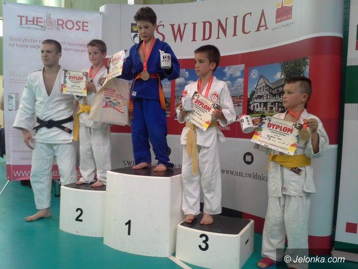Świdnica: Medale naszych judoków w Świdnicy