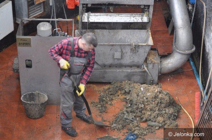 Jelenia Góra: Muszla to nie kubeł na śmieci