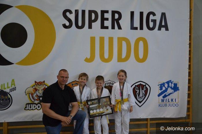Oleśnica: Medalowe pozycje judoków w Oleśnicy