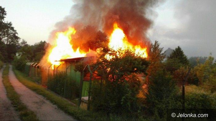 Jelenia Góra: Znów płonęły altany
