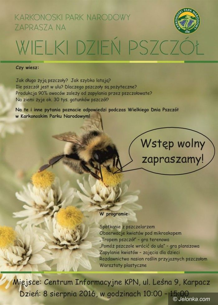 Karpacz: Wielki dzień pszczół – jutro