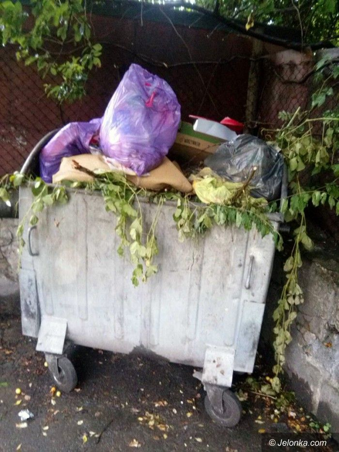Mysłakowice: Czytelnicy: Gmina Mysłakowice tonie w śmieciach