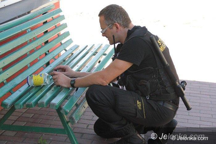 Jelenia Góra: Jadowita niespodzianka w toi–toi