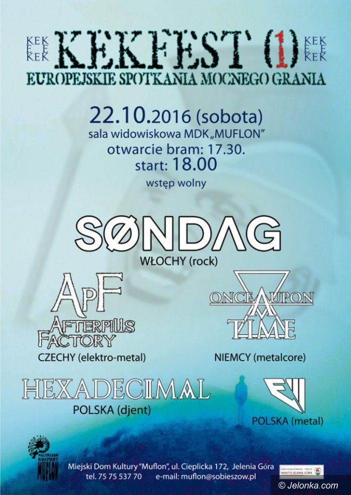 Jelenia Góra: Niezwykły koncert w Muflonie