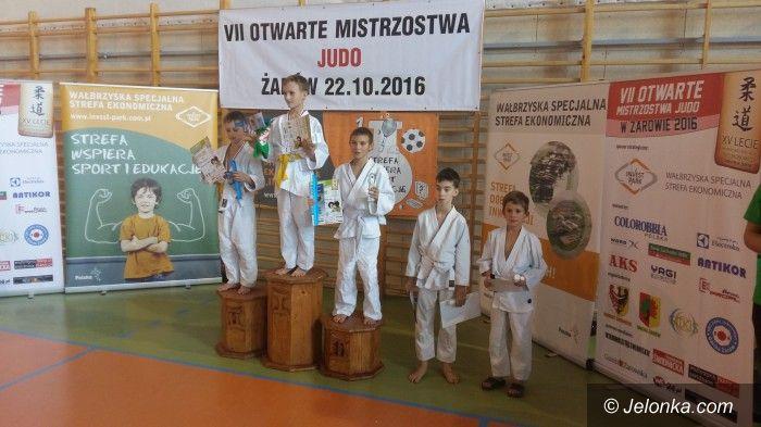 Żarów: Medale judoków w Żarowie