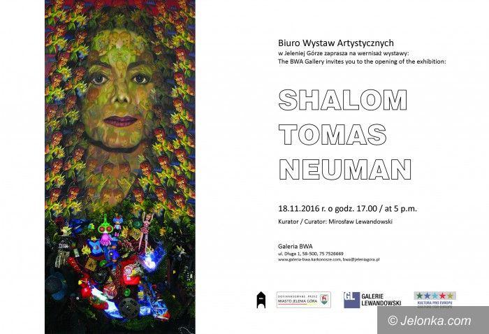Jelenia Góra: Sztuka Shaloma Tomasa Neumana w BWA  od jutra