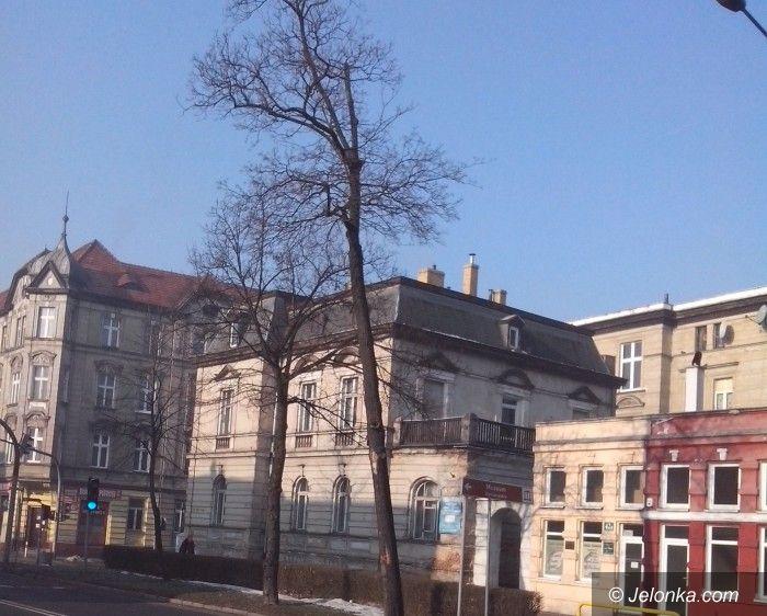Jelenia Góra: Z Wojska  Polskiego ubędzie starych drzew