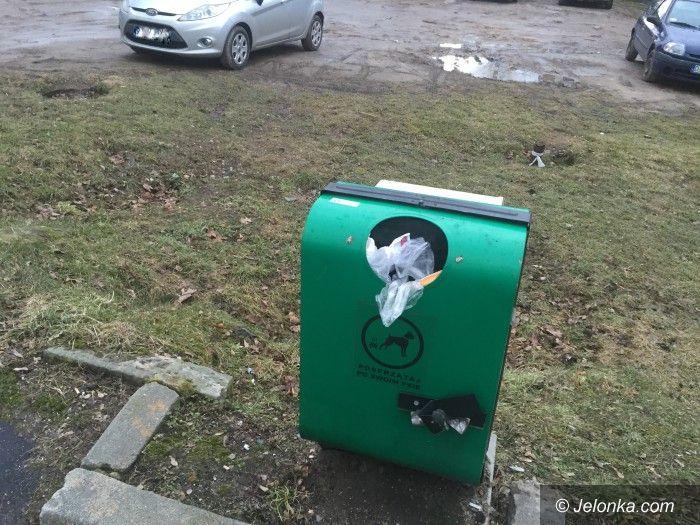 Jelenia Góra: Czy mieszkańcy sprzątają po swoich psach?