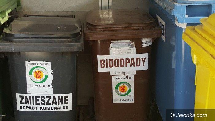 Jelenia Góra: Niebawem nowe zasady segregacji odpadów