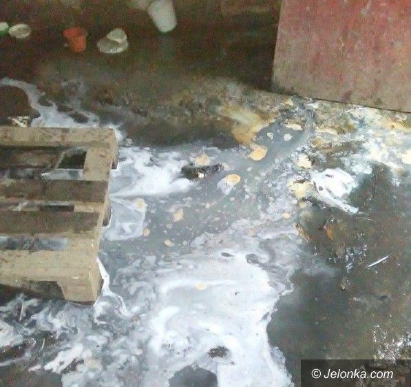 Jelenia Góra: Ścieki zalewały piwnicę przez dwa lata