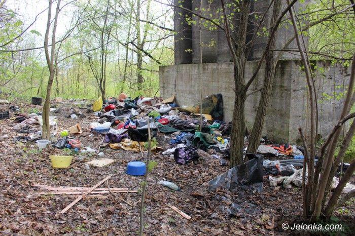 Jelenia Góra: Sprzątanie Borowego Jaru – przyłącz się