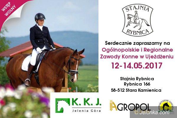 Region: Zdolni jeźdźcy i piękne konie w Rybnicy