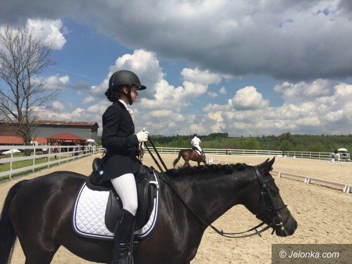 Region: Zawody w ujeżdżaniu koni w Rybnicy