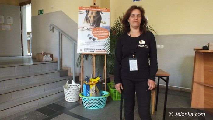 Jelenia Góra: Zbiórka karmy dla zwierząt Fundacji Mondo Cane