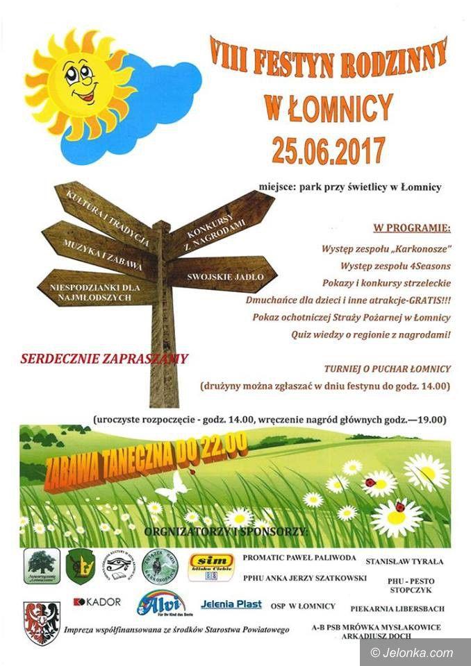 Region: VIII Festyn Rodzinny w Łomnicy