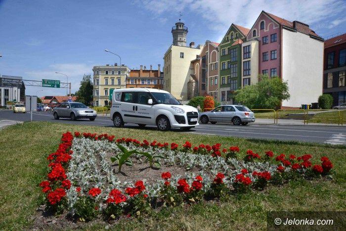 Jelenia Góra: Kwiaty w mieście dzielnie znoszą ruch i spaliny