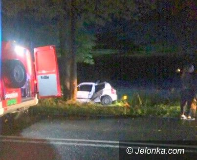 Jelenia Góra: Samochód uderzył w drzewo