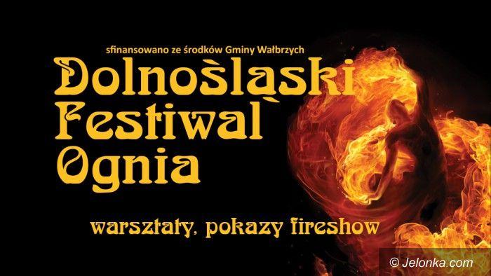 Wałbrzych: Dolnośląski Festiwal Ognia – ruszyły zgłoszenia