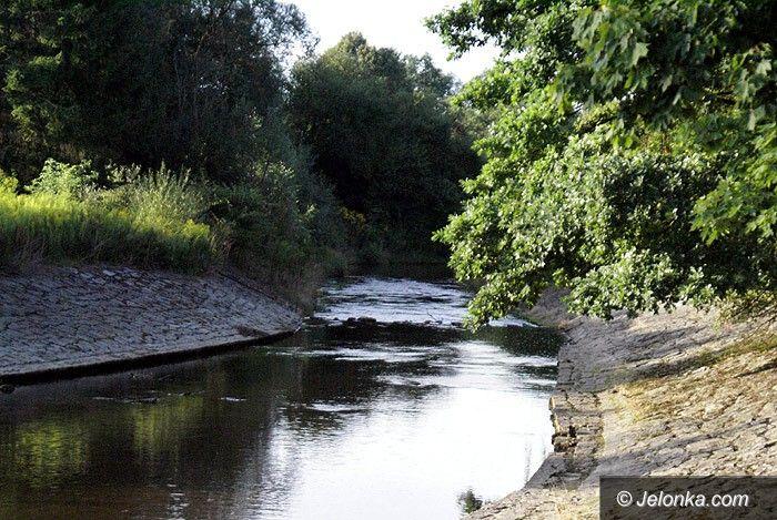 Jelenia Góra: Czytelnik: zarośnięty Park Norweski!