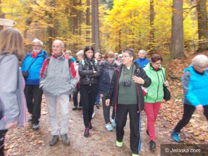 Region: Jesienny spacer w Koronach Drzew