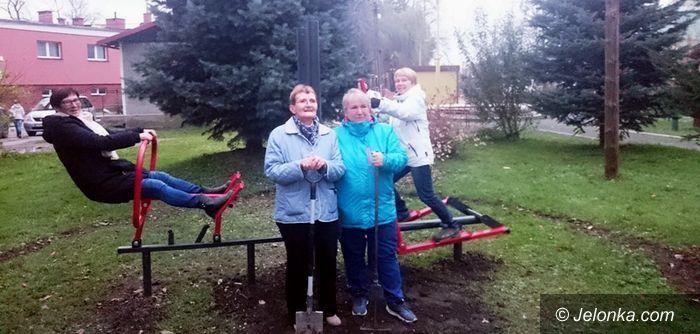 Region: Zewnętrzna minisiłownia w Miłkowie