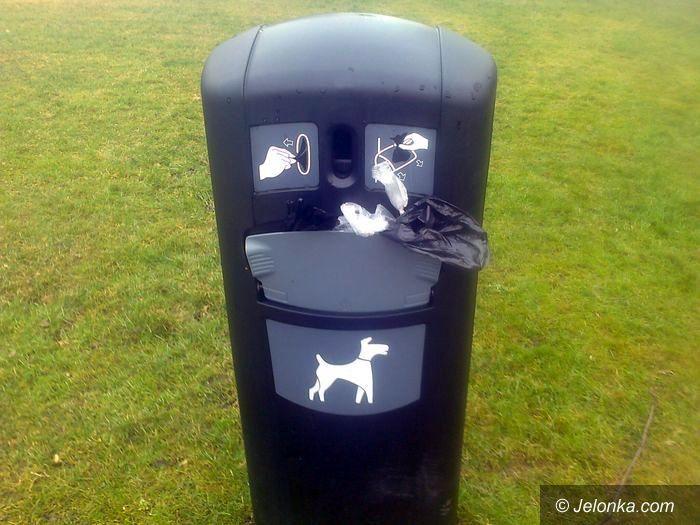 Jelenia Góra: Czytelniczka: Psi problem w parku przy ul. Morcinka