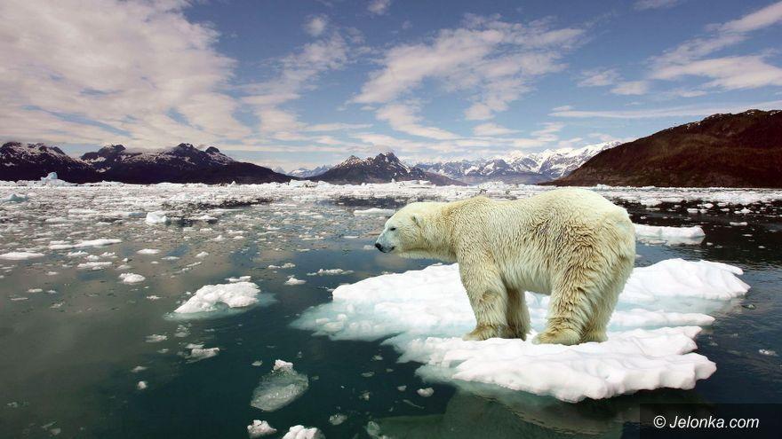 Polska: Globalne ocieplenie – czy to problem?