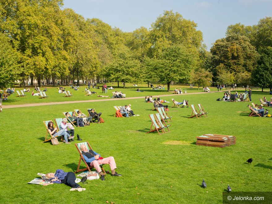 Region: Zielone miasto na zdrowie