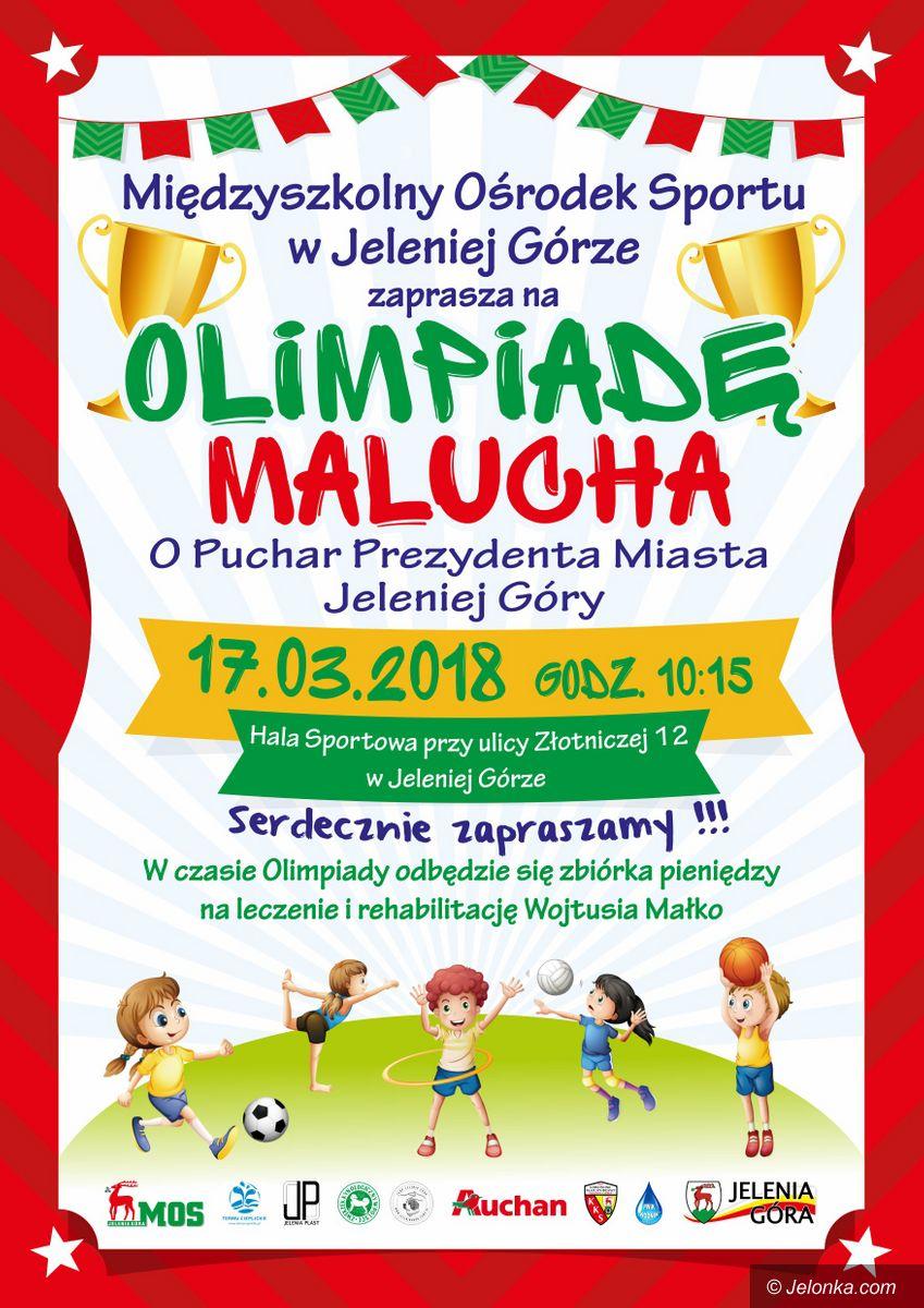 Jelenia Góra: Wkrótce Olimpiada Malucha