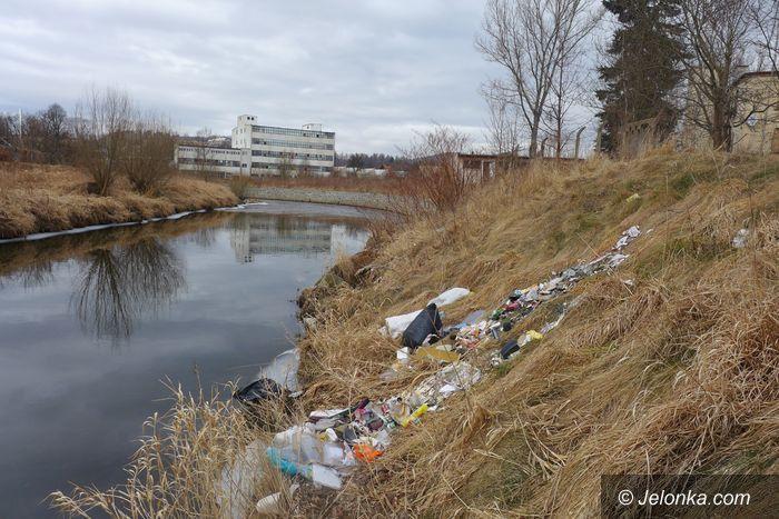 Jelenia Góra: Góry śmieci na brzegach Kamiennej